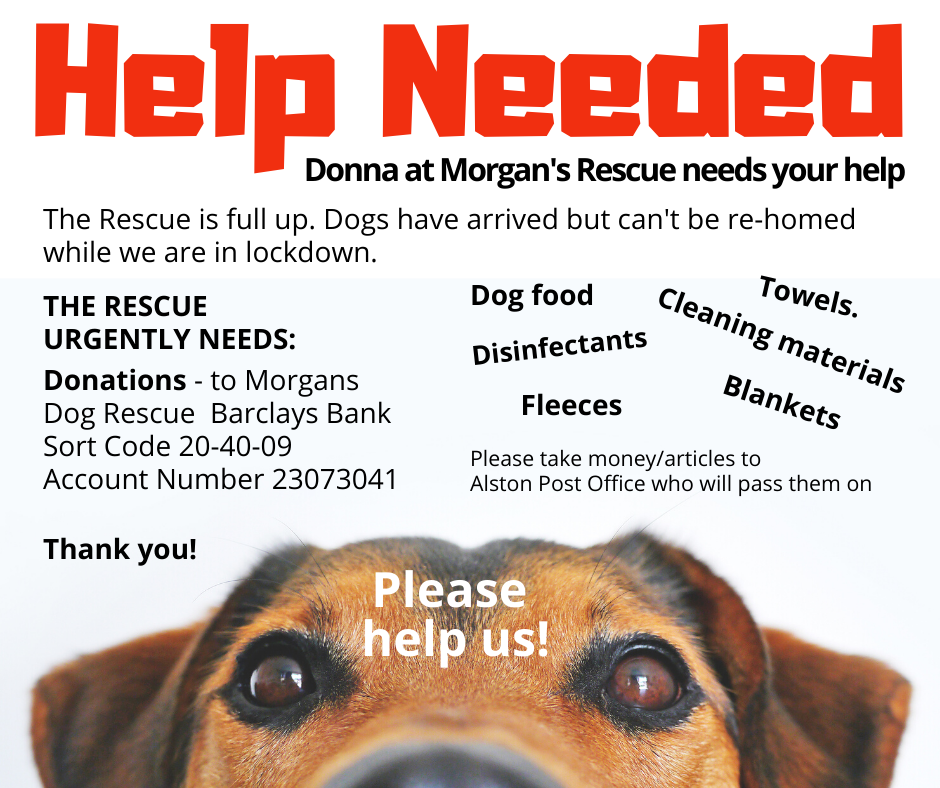 Morgans' Dog Rescue